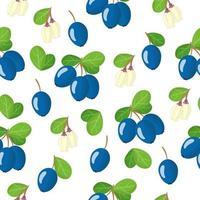Nahtloses Muster der Vektorkarikatur mit exotischen Früchten, Blumen und Blättern der Moorheidelbeere auf weißem Hintergrund vektor