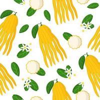 Nahtloses Muster der Vektorkarikatur mit exotischen Früchten, Blumen und Blättern der Hand des Zitrusbuddha auf weißem Hintergrund vektor