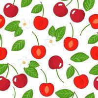 nahtloses Muster der Vektorkarikatur mit Prunus subgen. Blumen und Blätter der exotischen Früchte Cerasus oder der Kirsche auf weißem Hintergrund vektor
