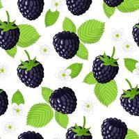 Nahtloses Muster der Vektorkarikatur mit exotischen Früchten, Blumen und Blättern des Rubus eubatus oder der Brombeere auf weißem Hintergrund vektor