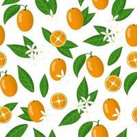 Nahtloses Muster der Vektorkarikatur mit exotischen Früchten, Blumen und Blättern von Fortunella oder Kumquat auf weißem Hintergrund vektor