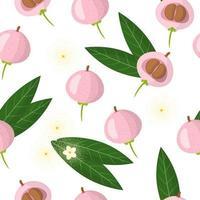 Nahtloses Muster der Vektorkarikatur mit exotischen Früchten, Blumen und Blättern von Syzygium jambos oder Pomarose auf weißem Hintergrund vektor