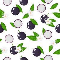 Nahtloses Muster der Vektorkarikatur mit exotischen Früchten, Blumen und Blättern von jaboticaba auf weißem Hintergrund vektor