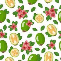 Nahtloses Muster der Vektorkarikatur mit exotischen Früchten, Blumen und Blättern von acca sellowiana oder feijoa auf weißem Hintergrund vektor