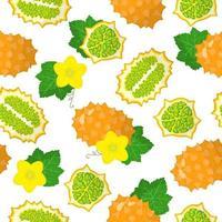 nahtloses Muster der Vektorkarikatur mit exotischen Früchten, Blumen und Blättern von Cucumis metuliferus oder Kiwano auf weißem Hintergrund vektor