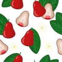 Nahtloses Muster der Vektorkarikatur mit exotischen Früchten, Blumen und Blättern des syzygiumaqueum oder des jambu auf weißem Hintergrund vektor