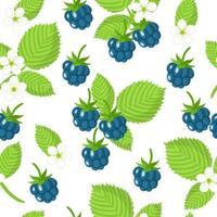 Nahtloses Muster der Vektorkarikatur mit exotischen Früchten, Blumen und Blättern der europäischen Brombeere auf weißem Hintergrund vektor
