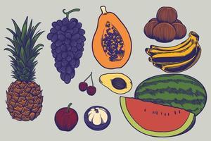 stor uppsättning färsk frukt handritade illustrationer i graveringsstil. skisser av olika livsmedel. detaljerad elementillustration, perfekt för meny, bokdesign. hälsosam livsstilskoncept vektor