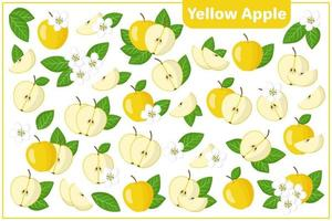 Satz Vektorkarikaturillustrationen gelber Apfel exotische Früchte, Blumen und Blätter lokalisiert auf weißem Hintergrund vektor