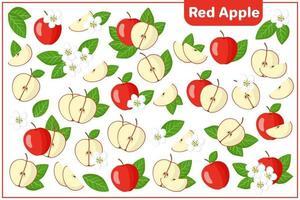 Satz von Vektorkarikaturillustrationen mit exotischen Früchten, Blumen und Blättern des roten Apfels lokalisiert auf weißem Hintergrund vektor