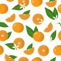 Nahtloses Muster der Vektorkarikatur mit exotischen Früchten, Blumen und Blättern der Zitrusmandarinenorange auf weißem Hintergrund vektor