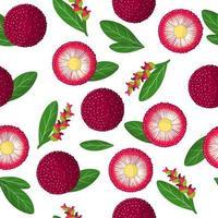Nahtloses Muster der Vektorkarikatur mit exotischen Früchten, Blumen und Blättern von Myrica Rubra oder Yangmei auf weißem Hintergrund vektor