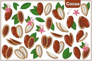 Satz von Vektorkarikaturillustrationen mit exotischen Kakaofrüchten, -blumen und -blättern lokalisiert auf weißem Hintergrund vektor