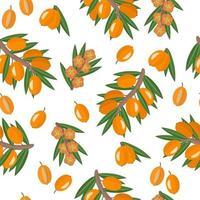 Nahtloses Muster der Vektorkarikatur mit exotischen Früchten, Blumen und Blättern des Nilpferds oder des Sanddorns auf weißem Hintergrund vektor