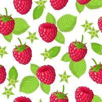 Nahtloses Muster der Vektorkarikatur mit exotischen Früchten, Blumen und Blättern des Rubus idaeus oder der Himbeere auf weißem Hintergrund vektor