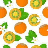 Nahtloses Muster der Vektorkarikatur mit exotischen Früchten, Blumen und Blättern von Solanum quitoense oder Naranjilla auf weißem Hintergrund vektor