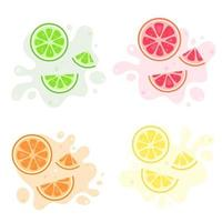 fruktstänk. exotiska och tropiska frukter citron, lime, apelsin, grapefrukt. vektor illustration
