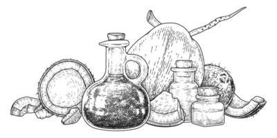 ganze halbe Schale Fleisch und Öl der Kokosnuss Hand gezeichnete Skizze. vektor