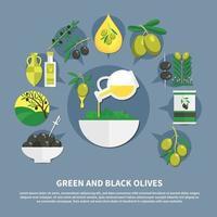 Oliven flache Zusammensetzung Vektor-Illustration vektor