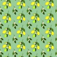 sömlös mynta bakgrund med citron grenar vektor