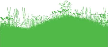 Natur Hintergrund vektor