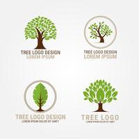 trädlogo vektor samling