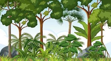 Waldlandschaftsszene tagsüber mit vielen Bäumen vektor