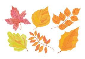 Herbst Aquarell Floral Set