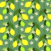 nahtloser Minzhintergrund mit Zitronenzweigen vektor