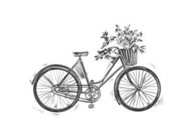 Vektor Hand gezeichnete Illustration von Stadtfahrrad in Tinte Hand gezeichneten Stil. Fahrrad mit Durchstiegsrahmen, Gepäckträger und vorderem Weidenkorb.