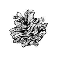 Tannenzapfen.christmas Baumdekoration. ein Tannenzapfen. Hand gezeichnete botanische Vektorillustration. Gestaltungselemente für Einladungen, Weihnachtsdekoration, Grußkarten, Drucke, Druck.Weihnachtsdekorationen vektor