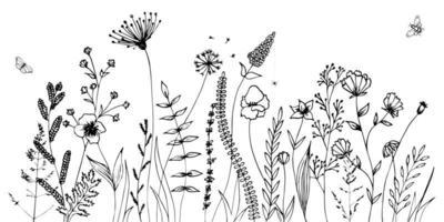 schwarze Schattenbilder von Gras, Blumen und Kräutern lokalisiert auf weißem Hintergrund. handgezeichnete Skizze Blumen und Insekten. vektor