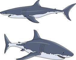 zwei Vektorhaie im Cartoon-Stil vektor