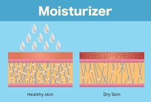 Feuchtigkeitscreme und trockene Haut und gesunde Haut vektor