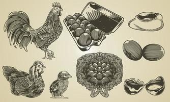 Vektor Hand gezeichnete Vintage Gravur Huhn Sammlung von Bauernhof Design-Elemente. Illustrationen von Röster, Henne, Kükenbaby, verpacktem Ei, Spiegelei, knackendem Ei in Retro-Skizze oder Radierungsstil