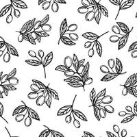 nahtloses Muster von Olivenöl. Olivenzweigmuster. handgezeichnete Vektorillustration vektor
