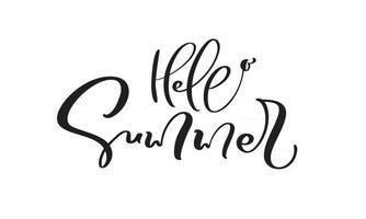 Hallo Sommer Kalligraphie Schriftzug Pinsel Text vektor