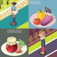 Vektorillustration des isometrischen Entwurfskonzepts der organischen Nahrung vektor