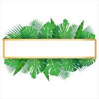 tropische Blätter um einen weißen Rahmen kopieren Raum hellen abstrakten Hintergrund für Banner Flyer oder Cover mit Kopie Raum für Text oder Emblem vektor