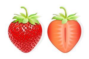 Scheibe Erdbeer süße Frucht Illustration für Web isoliert auf weißem Hintergrund vektor
