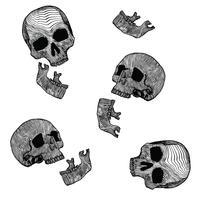 Skeleton Linolschnitt-Vektor-Satz v2