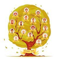 Familienmitglieder genealogische Baumsatzvektorillustration vektor