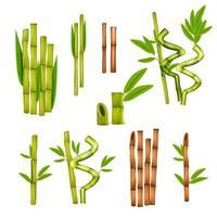realistische Satzvektorillustration des Bambus vektor