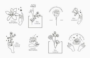 Schönheit okkulte Sammlung mit Blume vektor