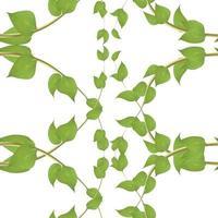 horizontales nahtloses Muster des Vektors mit grünen Weiden-Efeusprossen und Blättern mit Herz auf weißem Hintergrund vektor