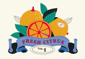 Weinlese-Zitrusfrucht-Aufkleber-Illustration