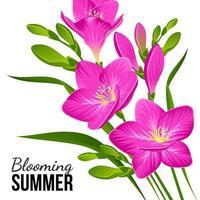 lila Blumen auf einem weißen Hintergrund vektor