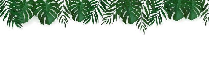 natürlicher realistischer grüner Palmblatt tropischer Hintergrund vektor
