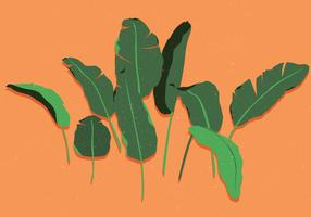Banan Leaf Vol 2 Vector