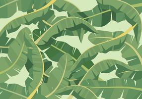 Bananenblatt Hintergrund vektor